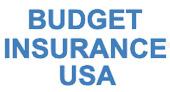 Budget Insurance USA logo
