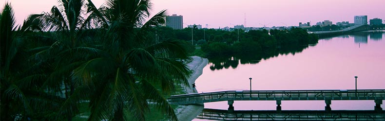 Fort Myers skyline