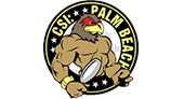 CSI Palm Beach logo