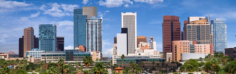 phx skyline moving companies